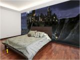 Harry Potter Full Wall Mural First Time to Hogwarts Harry Potter Wall Mural