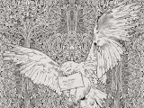 Harry Potter Mandala Coloring Pages Malvorlagen Harry Potter Ausmalbild Harry Potter ¢‹†…