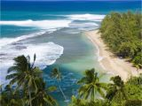 Hawaiian Beach Wall Murals Wallmonkeys Kee Beach From Kalalau Trail Peel and Stick Wall Decals