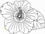Hawaiian Flower Coloring Pages Coloring Pages Hawaiian Flowers Fresh Hawaii Coloring Pages New S S