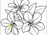 Hawaiian Flower Coloring Pages Flower Page Printable Coloring Sheets