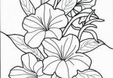 Hawaiian Flower Coloring Pages Hawaii Coloring Pages New S S Media Cache Ak0 Pinimg originals 0d 1d