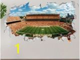 Heinz Field Wall Mural 122 Best Wall Stickers & Murals Images