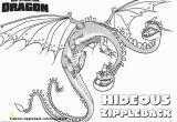Hideous Zippleback Coloring Pages 28 Hideous Zippleback Coloring Pages