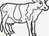 Highland Cow Coloring Page Cute Cow Coloring Pages Ideas