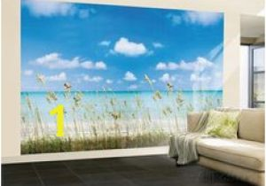 Hollywood Sign Wall Mural 75 Best Wall Murals Posters Images