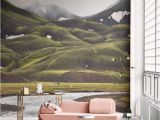 Home Wall Mural Ideas 11 R Than Life Wall Murals