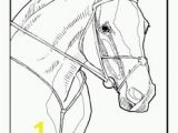 Horse Head Coloring Pages/ Printable Free Horse to Color