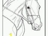 Horse Racing Coloring Pages 20 Best Konji Images