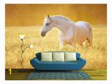 Horse Stable Wall Mural Amazon Wall26 Multi Colored Air Shata Fly Over Rocks