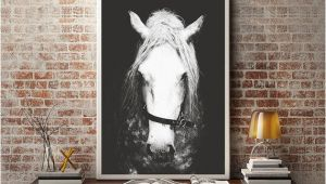 Horse Wall Decals Murals Black & White Horse Graphy Horse Wall Decor Horse Wall