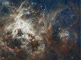 Hubble Deep Field Wall Mural Free Image On Pixabay Galaxy Star Tarantula Nebula