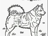 Husky Dog Coloring Pages Printable Husky Coloring Pages Fresh 2018 Dog Colouring Picture with Printable