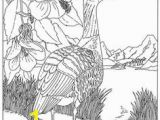 Idaho State Bird Coloring Page 96 Best Coloring Pages Line Drawings Birds Images