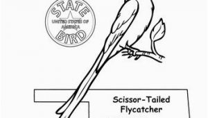 Idaho State Bird Coloring Page Idaho State Symbols Coloring Pages Idaho State Bird Coloring Page
