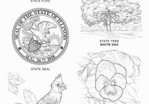 Idaho State Bird Coloring Page State Coloring Pages 8
