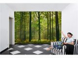 Ideal Decor Wall Murals Ideal Decor 100 In X 144 In Autumn forest Wall Mural