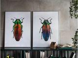 Ikea Wall Murals Shop Bild Poster Beetles