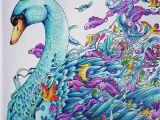 Imagimorphia Coloring Pages Swan Imagimorphia Kerby Rosanes Inspiration