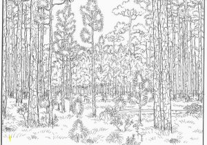 Independence Day Coloring Pages Printable Independence Day Coloring Page Fresh forest Coloring