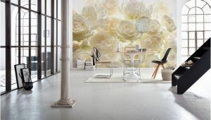 "Ivory Rose Wall Mural Komar Rose 12 1 X 98"" Wall Mural Wallpapers"