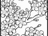 Japanese Cherry Blossom Coloring Pages Free Cherry Blossom Coloring Page to Print Out