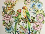 Johanna Basford Magical Jungle Colored Pages Magical Jungle by Johanna Basford Coloured by Morena