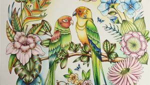 Johanna Basford Magical Jungle Colored Pages Magical Jungle by Johanna Basford Coloured by Morena