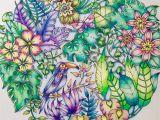 Johanna Basford Magical Jungle Colored Pages Resultado De Imagem Para Fbcdn Sphotos A A Akamaihd