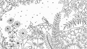 Johanna Basford Secret Garden Coloring Pages Pin Auf Joanna Basford Secret Garden