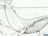 Jonah and the Whale Coloring Pages Excellent Picture Of Jonah and the Whale Coloring Pages