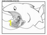 Jonah Inside the Whale Coloring Page 278 Best Jonah Images