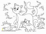 Kitty Cat Coloring Pages Printable Coloring Pages Kitten to Color Kitten