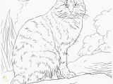Kitty Cat Coloring Pages Printable Elegant Cat Coloring Pages Free Printable Awesome Cool Od Dog