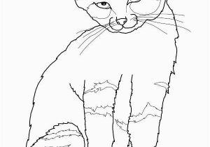 Kitty Cat Coloring Pages Printable Free Printable Cat Coloring Pages for Kids Inside Free Cute