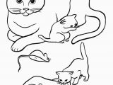 Kitty Cat Coloring Pages Printable Pet Cat Coloring Page