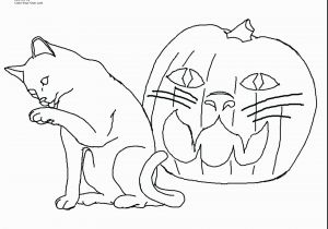 Kitty Cat Coloring Pages Printable Printable Kitty Coloring Pages Unique Cat Printable Coloring Pages