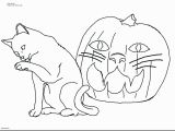 Kitty Cat Coloring Pages to Print Printable Kitty Coloring Pages Unique Cat Printable Coloring Pages