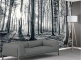 Komar Birch forest Wall Mural 1wall Black and White forest Trees Mural Wallpaper