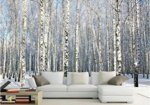 Komar Birch forest Wall Mural Cheap Mural Wallpaper 3d Buy Quality 3d Wallpaper Directly