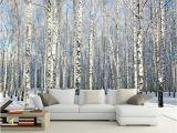 Komar Birch Wall Mural Cheap Mural Wallpaper 3d Buy Quality 3d Wallpaper Directly