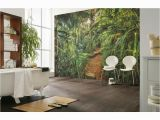 Komar Botanica Wall Mural Komar Nature Jungle Trail Wall Mural