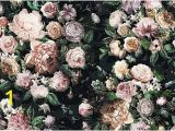 "Komar Floral Wall Mural Vliestapete ""victoria Black Panel"" Komar Floral Kaufen"