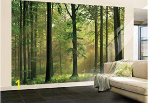 Komar Stone Wall Mural Amazon 100×144 Autumn forest Huge Wall Mural Art Home & Kitchen
