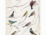 Komar Wall Mural Birds Komar Birds Wall Decal 15 Piece Set In 2019