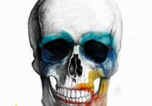 Lady Gaga Wall Mural Lady Gaga Artpop Skull