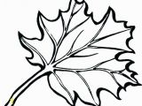 Large Fall Leaves Coloring Pages Autumn Leaf Coloring Pages Fall Leaf Coloring Page Draw Fall Leaves