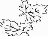 Large Fall Leaves Coloring Pages Small Leaves to Color Size Fall Leaf Coloring Pages Amazing