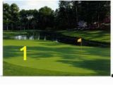 Large Golf Wall Murals 32 Best Golf Murals Images