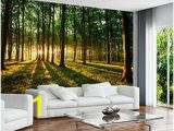 Large Mural Prints 46 Best Wall Mural Images